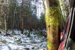 Mt.Sicker-Snow-Run-14-of-15