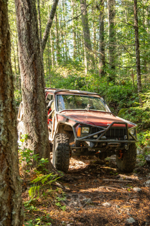 Full-Body-Rigs-Rock-Crawling-14-of-57