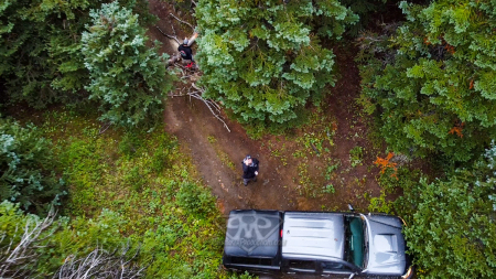 Whipsaw-Trail-2020-29