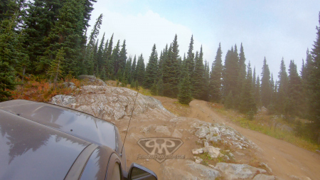 Whipsaw-Trail-2020-6