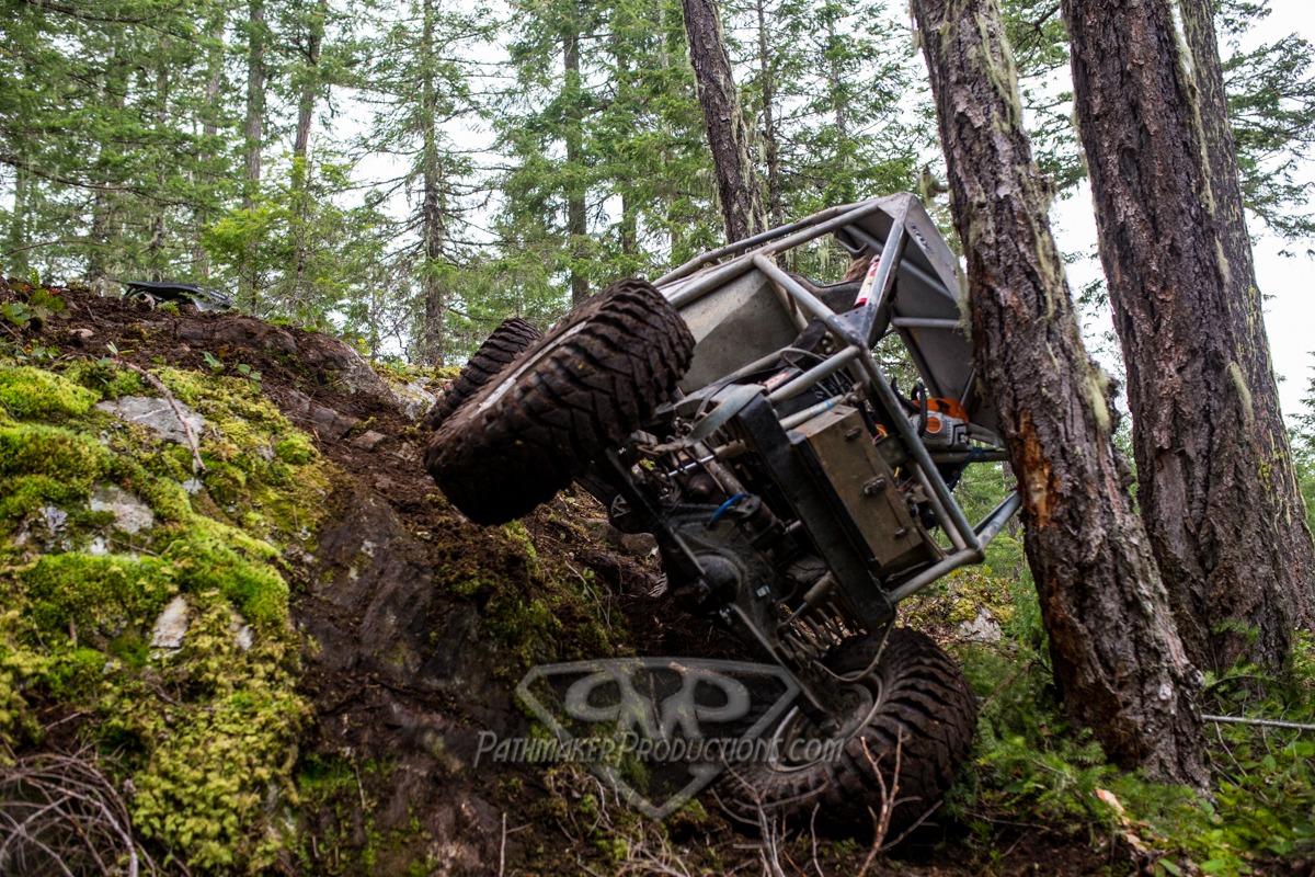 Newt Trail Exploring 2017